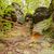 yıpranmış · kayalar · yaz · manzara · çöl · dağ - stok fotoğraf © bogumil