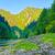 rocks in the morning in the dunajec river gorge stock photo © bogumil