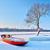 морозный · зима · деревья · лодка · Дунай · реке - Сток-фото © bogumil