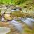 滝 · 山 · ポーランド · 自然 · 旅行 · 公園 - ストックフォト © bogumil