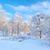 широкий · мнение · зима · альпийский · долины · снега - Сток-фото © bogumil