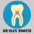 Human tooth emblem stock photo © BoogieMan