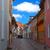 verouderd · steegje · huis · weg · stad · muur - stockfoto © borysshevchuk