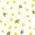 rapeseed flowers isolated on white background stock photo © bozena_fulawka