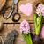 tuinieren · gesneden · boom · witte · metaal - stockfoto © bozena_fulawka