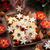 自家製 · クッキー · シナモン · 孤立した · 白 · 背景 - ストックフォト © brebca