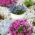 外 · 屋根 · 庭園 · シェルター · 自然 · 冬 - ストックフォト © brebca