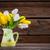 fresco · tulipas · jardim · flor · primavera - foto stock © brebca