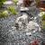 зеленая · трава · садоводства · каменные · пруд · святыня · Киото - Сток-фото © brebca