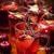 vörösbor · piros · gyümölcsök · zöld · buli · természet - stock fotó © brebca