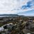 nierówny · nowa · fundlandia · brzegu · skał · wodorost · okładka - zdjęcia stock © brianguest