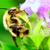 arı · görüntü · çiçek · çiçek · siyah - stok fotoğraf © brm1949