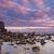 zee · stenen · kust · zonsopgang · water · boom - stockfoto © broker