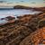 spokojny · pejzaż · morski · obraz · wygaśnięcia · charakter - zdjęcia stock © broker