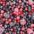 close up of frozen mixed fruit   berries   red currant cranberry raspberry blackberry bilberry stock photo © brozova
