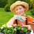 young woman planting flower seedlings gardening in spring planting begonia flowers in pot smiling stock photo © brozova