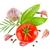 olgun · domates · şube · fesleğen · yalıtılmış · beyaz - stok fotoğraf © brulove