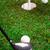 giocare · golf · pallina · da · golf · erba · verde · erba - foto d'archivio © BrunoWeltmann