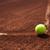 tennis · ombra · azione · campo · da · tennis · sfondo - foto d'archivio © brunoweltmann