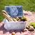 cesta · de · picnic · pan · leche · botella · aislado · blanco - foto stock © brunoweltmann