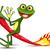 vidám · zöld · béka · illusztráció · piros · nyelv - stock fotó © brux