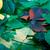 automne · Virginie · laisse · isolé · blanche · forêt - photo stock © bsani