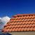 neve · telhado · azulejos · edifício · construção · casa - foto stock © bsani