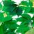vert · Virginie · laisse · blanche · printemps · nature - photo stock © bsani