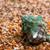 strisce · pietre · sabbia · usato · spiaggia · giardino - foto d'archivio © bsani