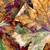 sonbahar · akçaağaç · yaprakları · yalıtılmış · beyaz - stok fotoğraf © bsani