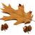autumn dried leaf of oak and acorns stock photo © bsani
