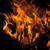 noite · fogueira · ardente · pôr · do · sol - foto stock © bsani