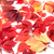 scattered autumn red leaves on white background stock photo © bsani