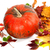 red ripe pumpkin and multicolor autumn leaves stock photo © bsani