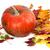 maduro · laranja · abóbora · secar · cair - foto stock © bsani