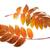 two autumnal rowan leafs stock photo © bsani