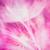 красочный · пастельный · яркий · аннотация · одуванчик · цветок - Сток-фото © bubutu