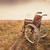 lege · rolstoel · weide · zonsondergang · vintage · retro - stockfoto © bubutu