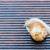 snail on the wet terrace stock photo © bubutu