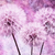 vintage · pastel · żywy · streszczenie · Dandelion · kwiat - zdjęcia stock © bubutu