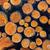 kıyılmış · yakacak · odun · yukarı · üst · diğer - stok fotoğraf © bubutu