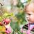 kicsi · piros · zöld · alma · közelkép · almafa - stock fotó © bubutu