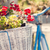 geraniums in a basket of retro bicycle stock photo © bubutu