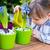 jardinagem · jacinto · flores · mesa · de · madeira · cópia · espaço · topo - foto stock © bubutu