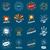 коллекция · вектора · Логотипы · фейерверк · моде · рождения - Сток-фото © butenkow