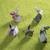 origami · zając · zielone · papieru · streszczenie - zdjęcia stock © butenkow
