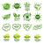 logos · natuur · element · vector · icon · groen · blad - stockfoto © butenkow
