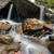 autumn forest waterfall stock photo © byrdyak