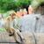 猿 · 赤ちゃん · 草 · 顔 · 自然 · 子 - ストックフォト © byrdyak