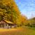 alone house in autumn mountain stock photo © byrdyak